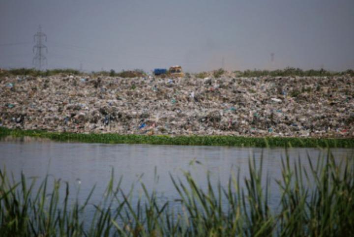 Pallikaranai Marsh Land